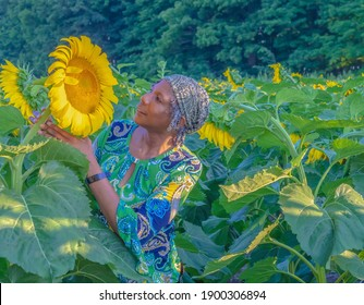 Beaverton, Ontario Canada - August 14, 2020: A smiling older black woman wearing a buff on her head takes a close look at a sunflower