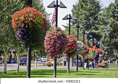 BEAVERTON, OREGON - AUGUST 12: Hanging flower baskets in Beaverton City Park on August 12, 2010 in Beaverton, Oregon. Prevention magazine named Beaverton one of the top 100 walking cities in America.