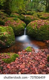 Becky Falls in fall colors, Dartmoor National Park, Devon, UK