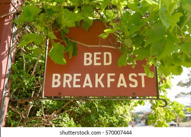 A Bed and Breakfast  hanging sign with vine leaves overhanging.