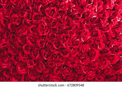 Rose Bed Images Stock Photos Vectors Shutterstock