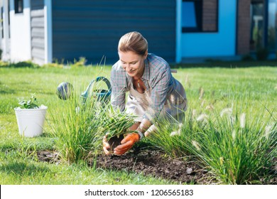 Bedding plants. Beautiful housewife sitting on the grass outside the house while holding rootstock in her hands bedding new plants
