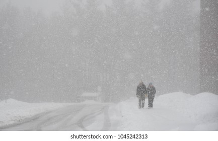Bedford, N.H., USA, March 13, 2018. On town election day, a couple walks through a blizzard to get to the polling place.