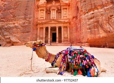 Bedouin camel rests near the treasury Al Khazneh carved into the rock at Petra, Jordan