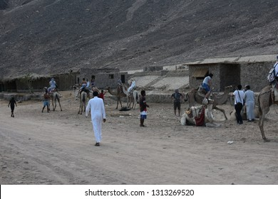 Bedouin village, Dahab, Egypt - November 11, 2018: passers-by Egyptians and tourists on camels in the Bedouin village near Dahab at the foot of the Sinai mountains