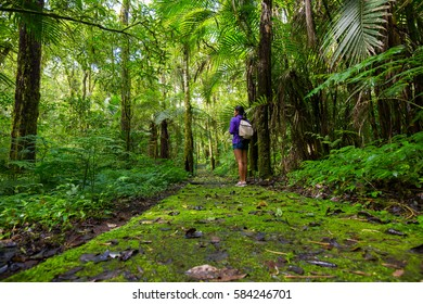 Bedugul, Bali, Indonesia - April 17, 2016: A girl hikes on the lush trails of Bali's botanical gardens located in the mountain area of Bedugul.