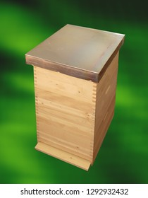 bee hive green background