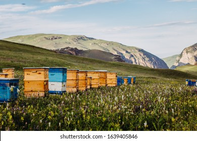 Bee hives in mountains near Khinalug village. Guba district, Azerbaijan