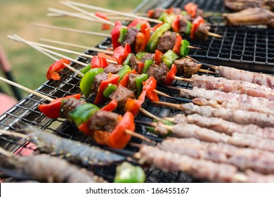 beef skewer on the barbecue grill