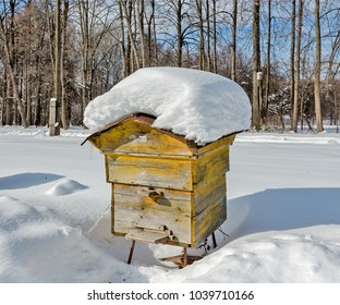 Beehive in the apiary in winter. Heavy frost, a lot of snow. Russia, Tula region.