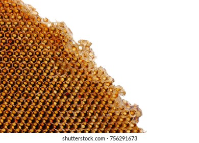 Beehive honey for beeswaxes, Honeycomb consists from apiculture beehives
