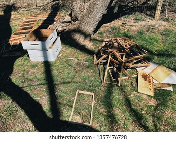Beehive set up with supers, frames, and foundations