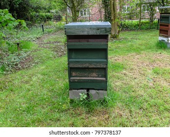 Beehive with two brood boxes and a super.  English National beehive.