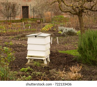 Beehive in Walled Garden