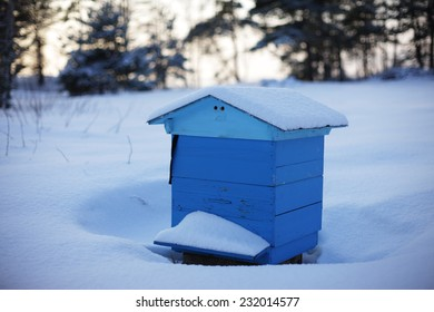 beehive in the winter forest