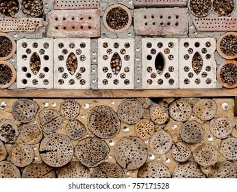 Beehives in botanical garden mid autumn
