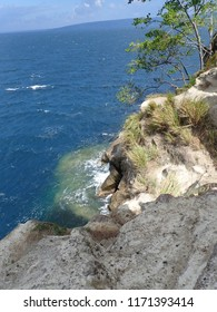 Beehives in Rabaul . Jumping from the cliff.
