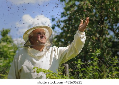 beekeeper and bee swarm, apiary beehive honey