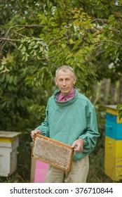 beekeeper holding frame honeycombs