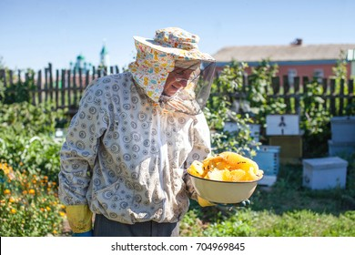 Beekeeper is holds honey in honeycombs on the apiary. Beekeeper on apiary.Beekeeper in his organic apiary, permaculture garden making ecological beekeeping