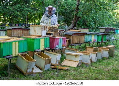 The beekeeper on the apiary forms new bee colonies. reproduction of bee families. work on the apiary - the formation of new bee colonies in the apiary