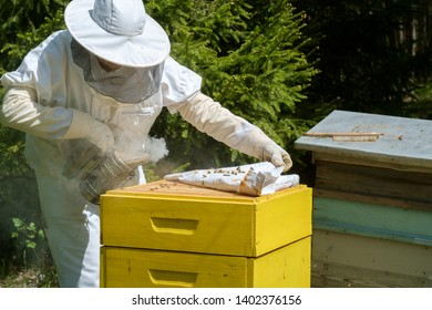 Beekeeper in protective workwear inspecting honeycomb frame at apiary.