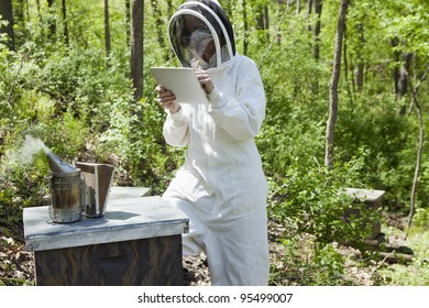 Beekeeper taking notes on a digital tablet at the beehive