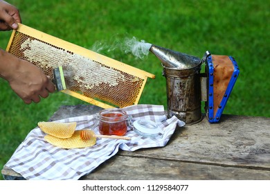 Beekeeper uncapping honeycomb with special beekeeping fork. chimney beekeeper. outdoors. Beekeeping concept.
