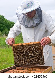 A beekeeper in veil at apiary among hives.