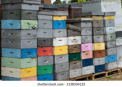Beekeeping boxes stacked and ready to be transported, France