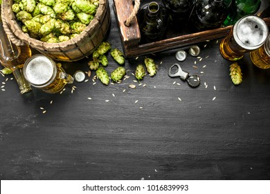 Beer background. Fresh beer and ingredients. On the black chalkboard.