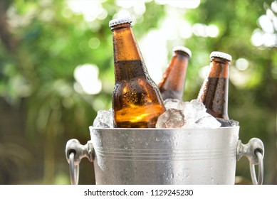 beer bottle chilled in wine cooler green garden background