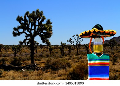 Beer bottle in Joshua Tree National Park wearing a sombrero and poncho.