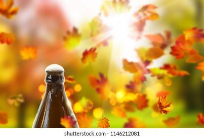 beer bottle on idyllic autumnal background