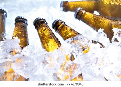 beer bottles chilled in ice