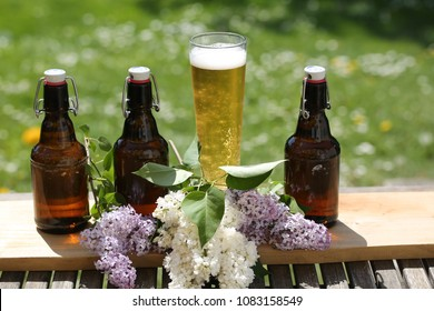 Beer bottles and beer glass in a row, father's day, copy space