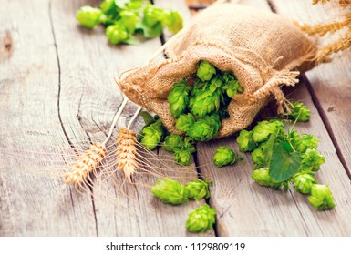 Beer brewing ingredients Hop in bag and wheat ears on wooden cracked old table. Beer brewery concept. Hop cones and wheat closeup. Sack of hops and sheaf of wheat on vintage background