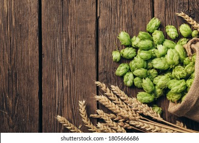 Beer brewing ingredients, hops, and wheat ears on a wooden cracked old table. Beer brewery concept. Hop cones and wheat closeup. Sack of hops and sheaf of wheat on vintage background.