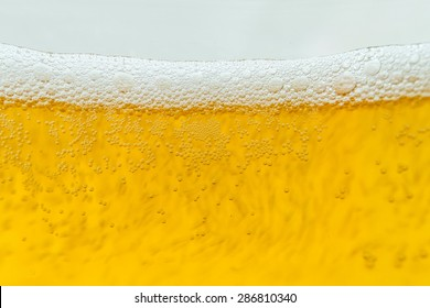 Beer bubbles in the high magnification
