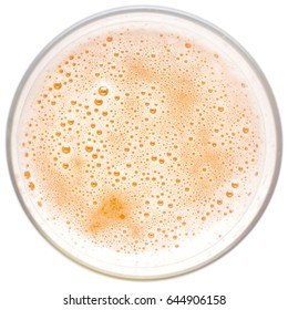 beer foam close up, the top view, in a beer glass on a white background, clipping path