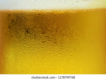 Beer with foam in the glass. Close up