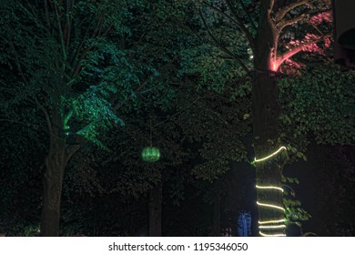 Beer Garden trees at night illuminated by lamps, lampions and a rope light