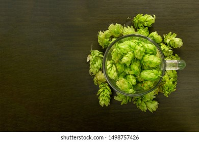 Beer glass mug filled with green hop cones. Concept of brewing process. Traditional craft ingredient for brewery. Top view with dark copy space