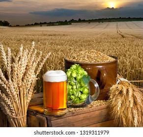 Beer glass and raw material for beer production.