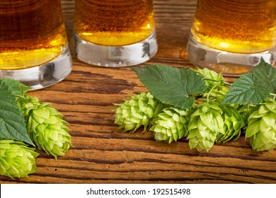 beer and hop cones