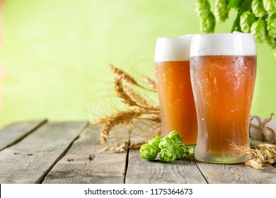 Beer and ingredients hops, wheat, barley on wood background, copy space