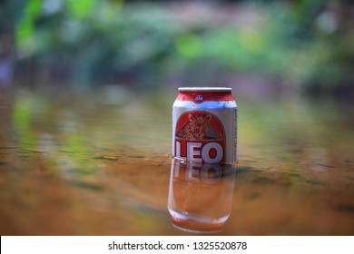 Beer leo cans in streams.02 February 2019.selective focus.