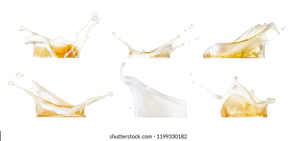 beer splashes collection isolated on white background