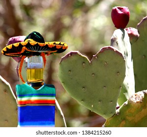 A beer wearing a sombrero and Mexican poncho standing next to a heart shaped prickly pear cactus.