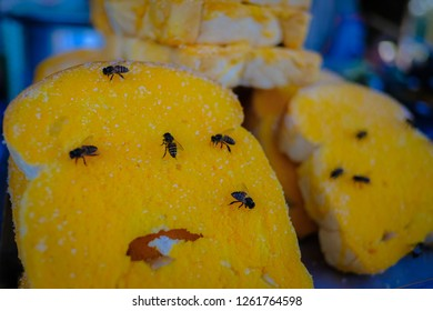 bees feeding yellow butter on the bread